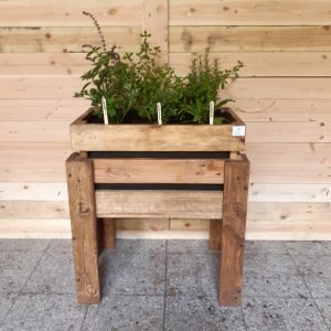 Huerto urbano con plantas aromáticas